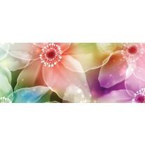 Fotobehang Bloemen | Roze, Paars | 250x104cm