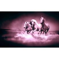 Fotobehang Papier Paarden | Paars | 254x184cm