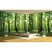 Fotobehang Vlies Bos, Natuur | Groen | GROOT 624x219cm