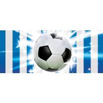 Fotobehang Voetbal | Blauw, Wit | 250x104cm