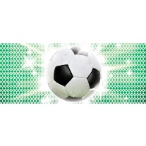 Fotobehang Voetbal   Groen, Wit   250x104cm