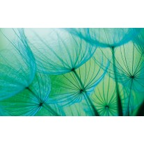 Fotobehang Papier Abstract   Groen   254x184cm