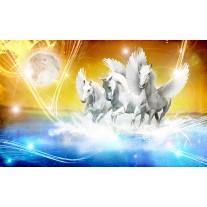 Fotobehang Papier Paarden | Blauw, Geel | 254x184cm