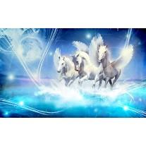 Fotobehang Papier Paarden | Blauw | 368x254cm