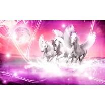 Fotobehang Papier Paarden | Roze | 368x254cm