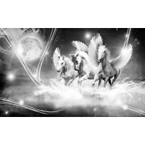 Fotobehang Papier Paarden | Grijs | 254x184cm