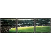 Fotobehang Vlies Voetbal | Groen | GROOT 624x219cm
