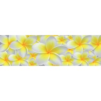 Fotobehang Vlies Bloemen | Geel, Wit | GROOT 832x254cm