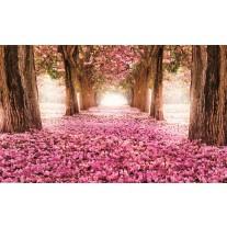 Fotobehang Papier Bloemen | Roze | 254x184cm