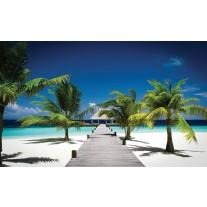 Fotobehang Papier Tropisch | Blauw, Groen | 368x254cm