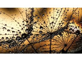 Fotobehang Papier Bloemen | Bruin, Goud | 254x184cm