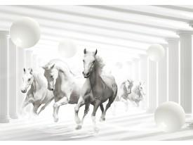 Fotobehang Vlies | Paarden | Wit, Grijs | 368x254cm (bxh)