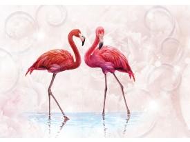 Fotobehang Vlies | Flamingo | Rood, Roze | 368x254cm (bxh)