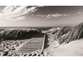 Fotobehang Vlies | Strand | Grijs, Zwart | 368x254cm (bxh)