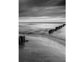 Fotobehang Stand | Grijs | 206x275cm