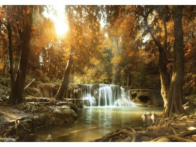Fotobehang Vlies | Bos, Waterval | Bruin | 368x254cm (bxh)