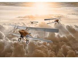 Fotobehang Vlies | Vliegtuig | Bruin, Geel | 368x254cm (bxh)