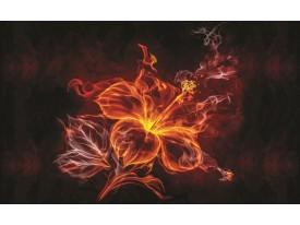 Fotobehang Vlies   Bloemen   Oranje   368x254cm (bxh)