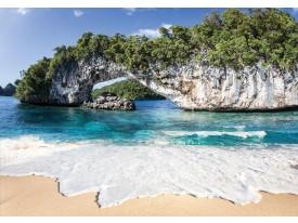 Fotobehang Vlies | Natuur, Strand | Groen | 368x254cm (bxh)