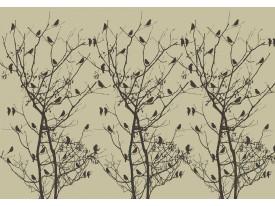 Fotobehang Vlies   Vogels, Boom   Zwart   368x254cm (bxh)