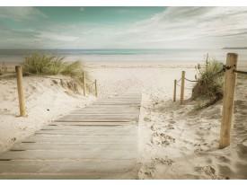 Fotobehang Vlies   Strand    Groen, Geel   368x254cm (bxh)