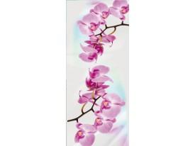 Deursticker Muursticker Orchidee, Bloemen | Roze | 91x211cm
