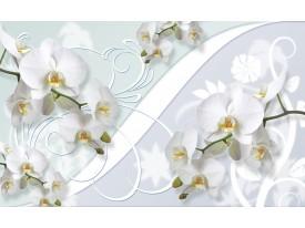 Fotobehang Orchidee, Bloemen   Wit   152,5x104cm