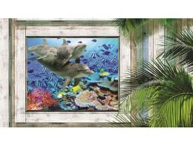 Fotobehang Vlies | Dolfijnen | Groen, Blauw | 368x254cm (bxh)
