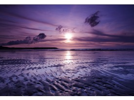 Fotobehang Vlies | Strand, Zee | Paars | 368x254cm (bxh)