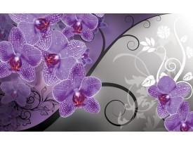 Fotobehang Bloemen, Orchidee   Paars, Grijs   152,5x104cm