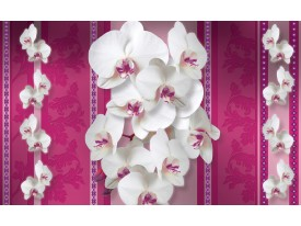 Fotobehang Papier Bloemen, Orchideeën | Roze, Wit | 368x254cm