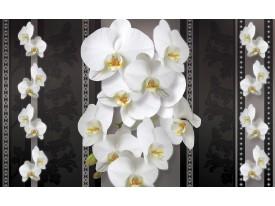 Fotobehang Bloemen, Orchideeën | Zwart, Wit | 312x219cm