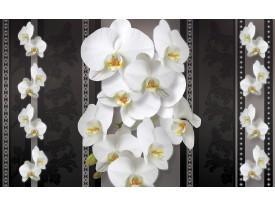 Fotobehang Vlies   Bloemen, Orchideeën   Zwart, Wit   368x254cm (bxh)