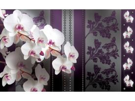 Fotobehang Bloemen, Orchideeën | Paars | 152,5x104cm