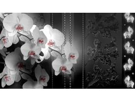 Fotobehang Bloemen, Orchidee   Zwart   104x70,5cm