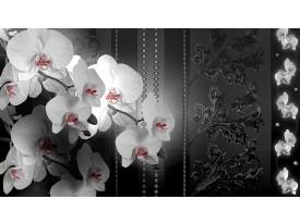 Fotobehang Vlies   Bloemen, Orchidee   Zwart   368x254cm (bxh)
