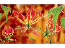 Fotobehang Bloemen | Oranje | 152,5x104cm