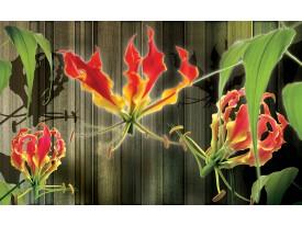 Fotobehang Papier Bloemen | Groen, Rood | 254x184cm