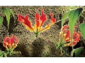 Fotobehang Bloemen, Muur | Groen, Rood | 104x70,5cm