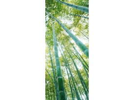 Deursticker Muursticker Boom, Bos | Groen | 91x211cm