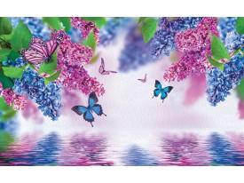 Fotobehang Bloemen | Paars, Blauw | 416x254