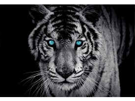 Fotobehang Vlies | Wilde Dieren | Blauw | 368x254cm (bxh)
