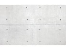 Fotobehang Vlies   Betonlook   Grijs   368x254cm (bxh)
