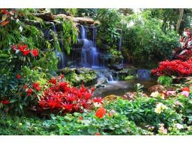 Fotobehang Natuur | Groen, Rood | 312x219cm