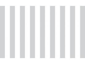 Fotobehang Vlies   Strepen   Grijs, Wit   368x254cm (bxh)