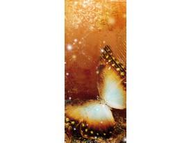 Fotobehang Stenen | Oranje | 91x211cm