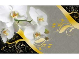 Fotobehang Vlies   Bloemen, Orchidee   Grijs   368x254cm (bxh)