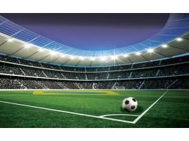 Fotobehang Voetbalstadion | Groen | 312x219cm