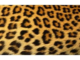 Fotobehang Luipaard | Bruin | 312x219cm