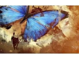 Fotobehang Papier Vlinder, Abstract   Blauw   254x184cm